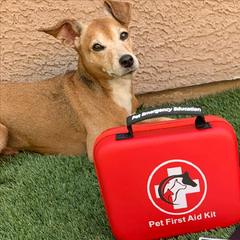Deluxe Pet First Aid Kit 60+ Emergency Items, Veterinarian Approved